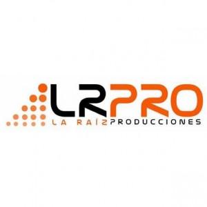 ENSAYO ARTISTA LA RAIZ PRODUCCIONES ACTIVIDAD PRIVADA Y CERRADA A PUBLICO